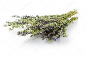 depositphotos_62190293-stock-photo-dried-hyssop-herb-isolated